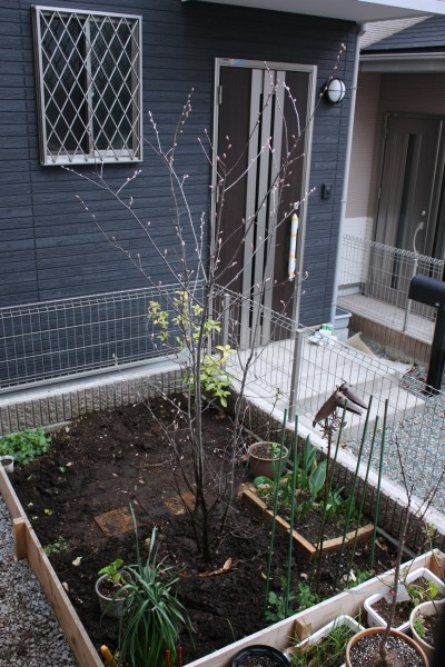 20100327_1